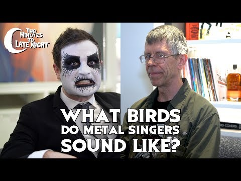 What Birds Do Metal Singers Sound Like? Mp3