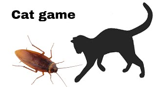 Cockroach On the screen to make fun with cat | cat games