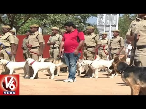 Ground Report On Police Dog Training | Integrated Intelligent Training Academy | V6 News