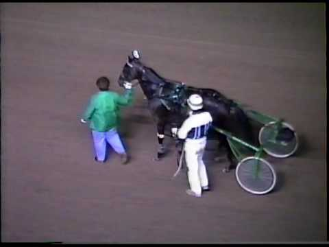 1991 09 21 PEI Colt Stakes 4 year old Colts