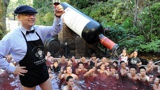 Фестиваль урожая и вина во Франции.(, 2015-10-10T18:56:30.000Z)