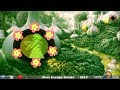 Vegetable World Fairy Rescue walkthrough Games2Rule G2R.