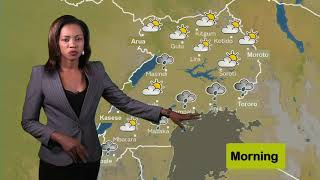 Weather forecast by Mollen for 05 02 2020