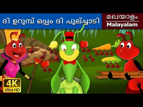 Ant And The Grasshopper in Malayalam - Fairy Tales in Malayalam - 4K UHD - Malayalam Fairy Tales thumbnail