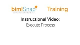Execute Process - bimlsnap Tutorial