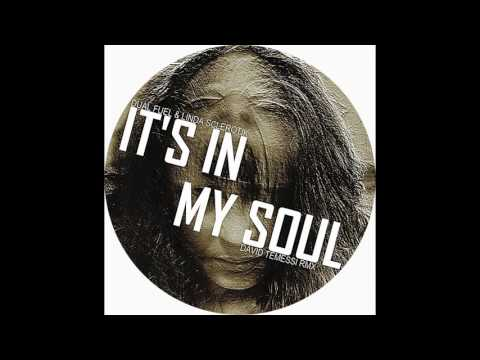 Dual Fuel, Linda Sclerotik - It's In My Soul (David Temessi Remix)