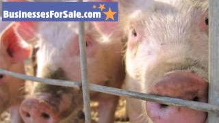Farms for Sale: Interview with a Livestock Farmer (Part 2) [Podcast]