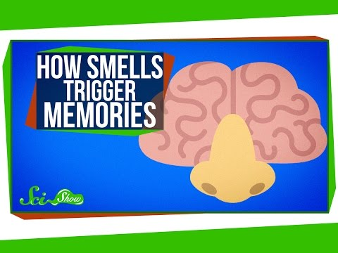 How Smells Trigger Memories