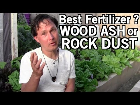 Wood Ash or Rock Dust a Better Fertilizer? & more Gardening Q&A