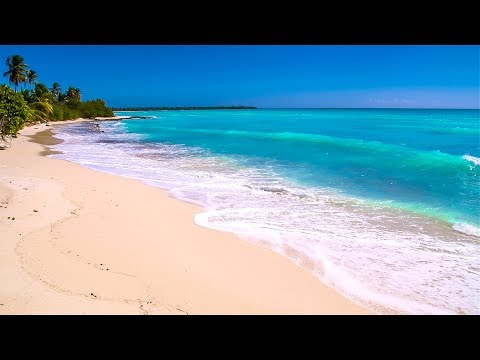 Waves On Saona Island - Relaxing Beach Sounds Of The Caribbean Sea For Study, Meditation And Sleep