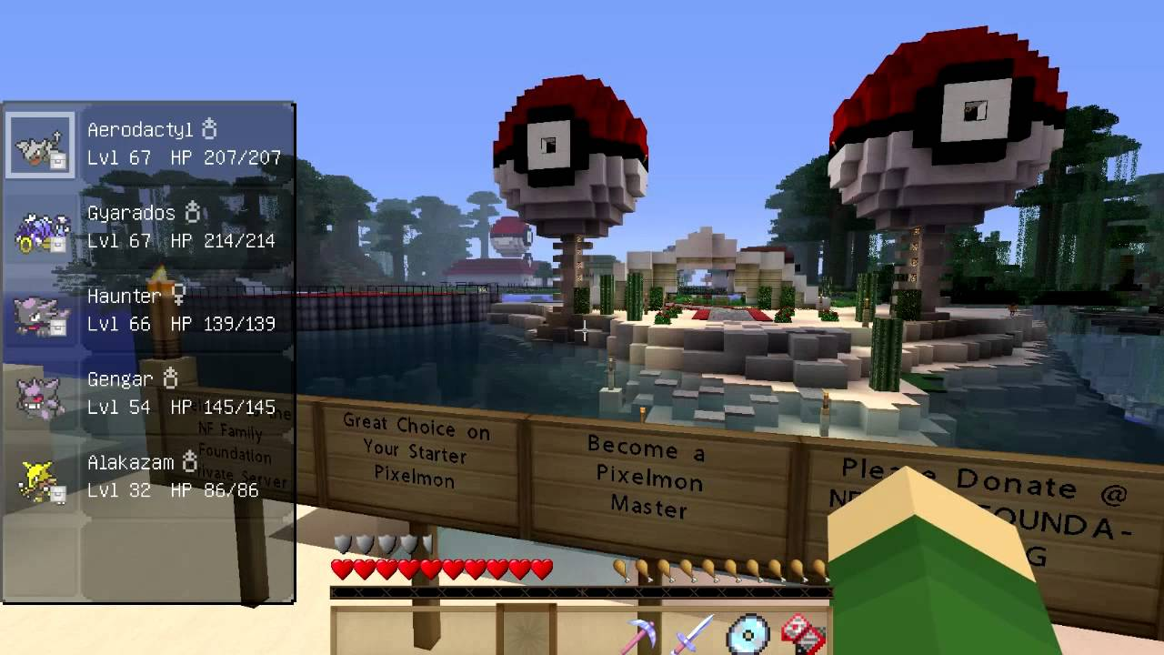 BulbaCraft - A Pixelmon Generations Server - Minecraft ...