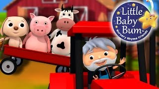 Farmer in the Dell | Nursery Rhymes by LittleBabyBum