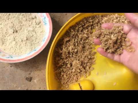 Thức Ăn cho Gà ta thả vườn - Chuối trộn Cám gạo đơn giản, dễ làm