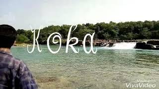 koka Assam natural beauti