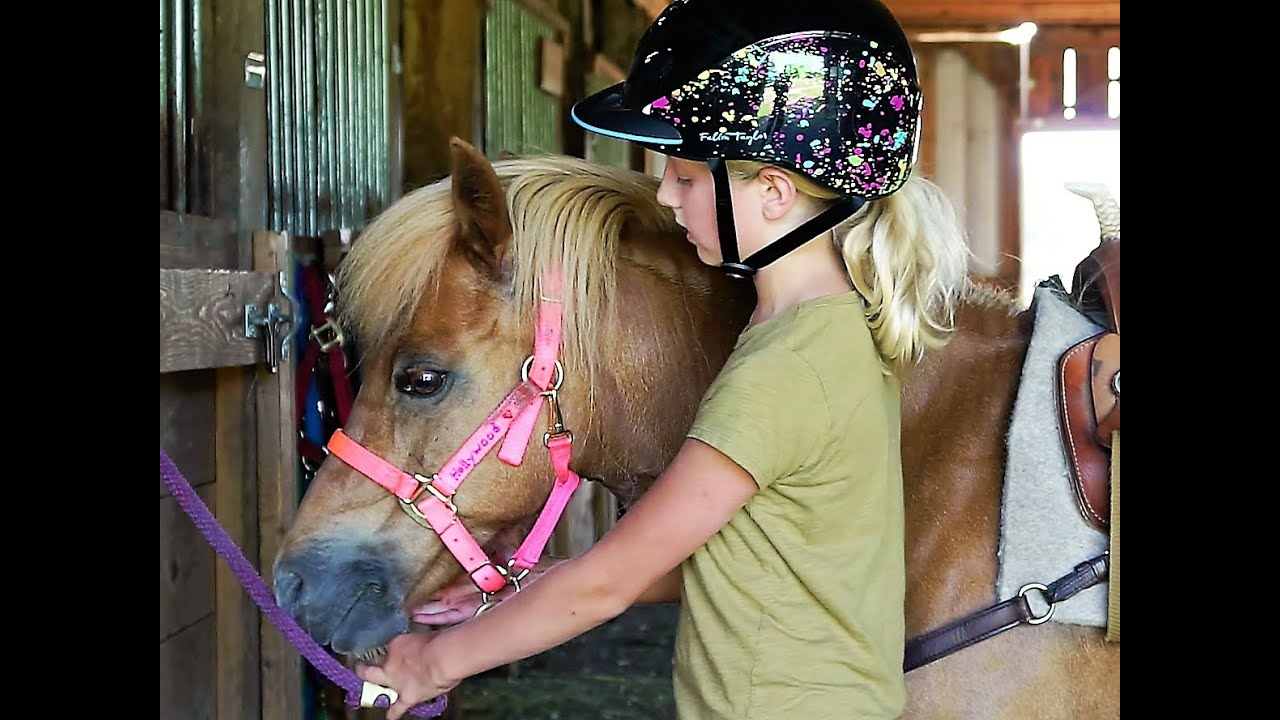 Training ponyplay Ponyplay training: