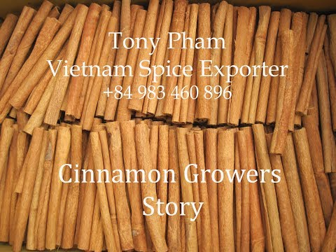 Vietnam Cinnamon (Cassia) - Growers Story - (Tony Pham Editor)