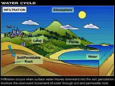 Environmental science experiments download free