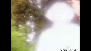 ange de lumière - rencontre avec son ange gardien