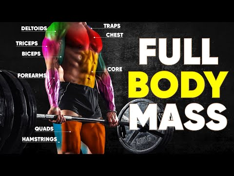 Top 6 Compound Exercises for Total Body MASS