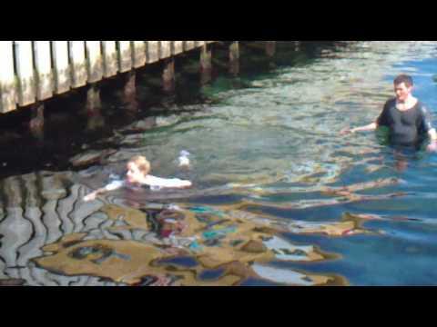 Stupid Norwegians having a swim