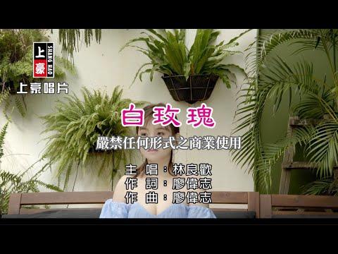 林良歡-白玫瑰【KTV導唱