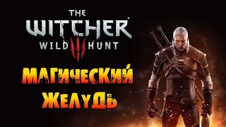 The Witcher 3: Wild Hunt - Магический желудь!
