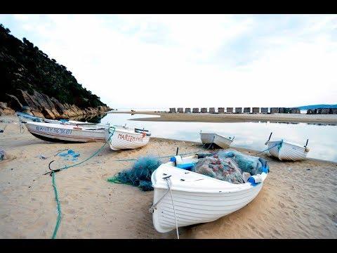 مهاجرون عالقون قبالة سواحل تونس يوافقون على العودة إلى بلادهم  - نشر قبل 45 دقيقة