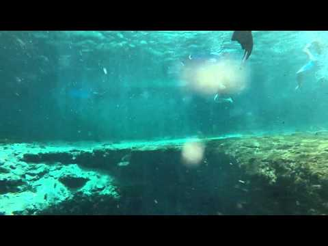 Things to do in North Florida - Ginnie Springs