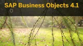 SAP BusinessObjects 4.1