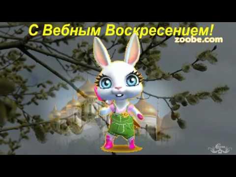 Зайка ZOOBE 'Музыкальное поздравление с Вербным Воскресением!' - Поиск видео на компьютер, мобильный, android, ios