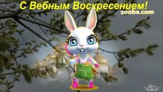 """Зайка ZOOBE """"Музыкальное поздравление с Вербным Воскресением!"""""""