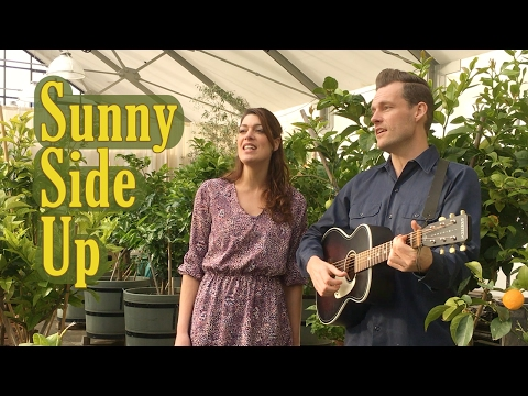 Sunny Side Up - akoestisch duo voor uw bruiloft, receptie, feestje. Ontspannen achtergrondmuziek.