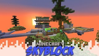 Sprucing Up The Place! - Skyblock - EP10 (Minecraft)