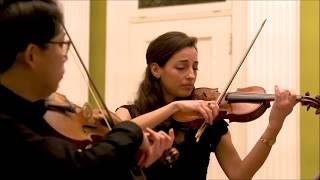 J. Vierdanck - Sonata a due violini soli