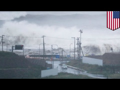 Climate change: Typhoons are getting stronger in East and Southeast Asia - TomoNews