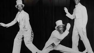 Roaring Twenties: The Tennessee Tooters - Hot Hot Hottentot, 1925
