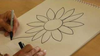 Drawing From Nature : How to Draw a Daisy