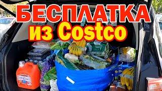 Закупка в Costco БЕСПЛАТНО Как экономить на продуктах из Костко Стоит ли покупать членство