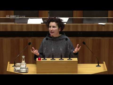 20161122 Nationalratssitzung, Teil 5 Alev Korun Grüne 1473012807