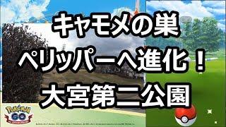 【ポケモンGO】キャモメの巣でペリッパーへ進化! in 大宮第二公園