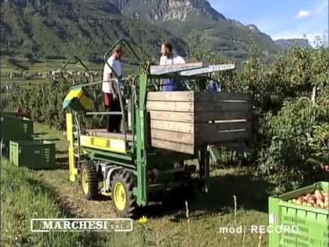 Cosechadoras de forraje usadas en colombia