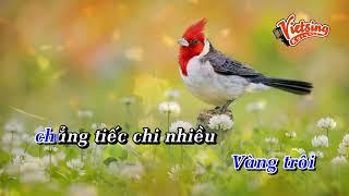 Lý Con Sáo Bạc Liêu - Phi Nhung - Tone Nam - Vietsing Karaoke