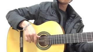 Cho một tình yêu - Rumba flamenco quay tay toe loe luôn