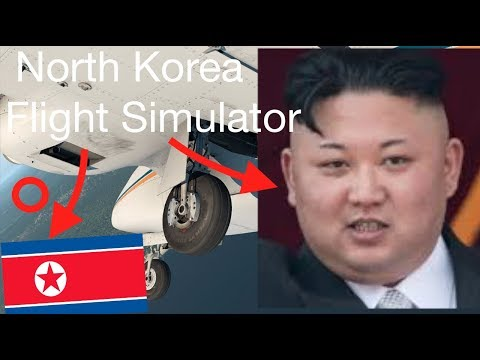 What Happens If You Fly to NORTH KOREA in a FLIGHT SIMULATOR?
