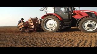 Sadzenie ziemniaków 2015