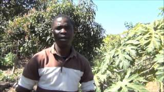 Introduction to Permaculture in Chichewa by Luwayo Biswick