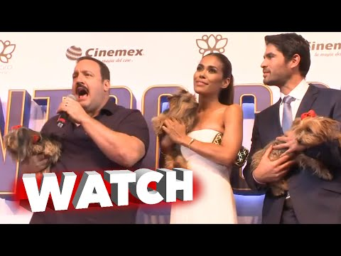Paul Blart Mall Cop 2: Kevin James Ask for Dog Adoption at Mexico Premiere -  Eduardo Verastegui