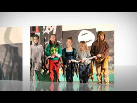 Meadow Lands Elementary School  2 & 3 gr performance