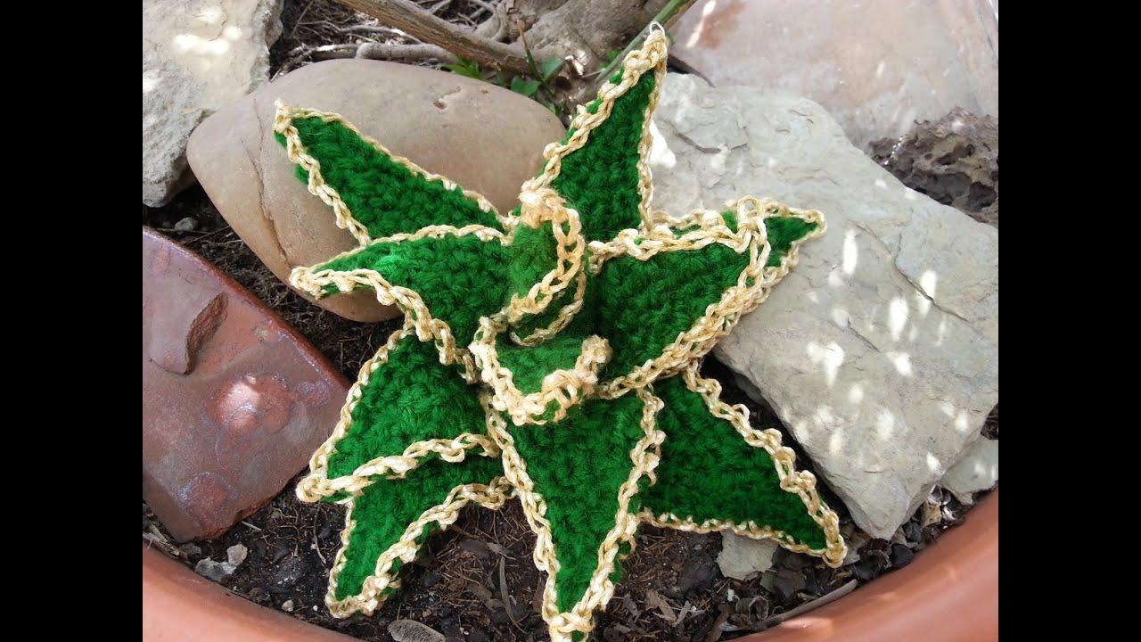 Tutorial de crochet gancillo cactus estrellado youtube - Como hacer flores de ganchillo ...