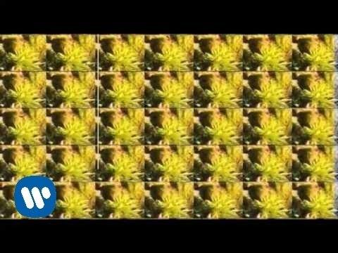 los-piratas-espacio-denso-videoclip-warner-music-spain